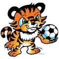 tiger-small